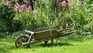 wheelbarrow-1232408_pix_CR